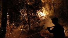 Płoną greckie lasy (PAP/EPA/KOSTAS TSIRONIS)