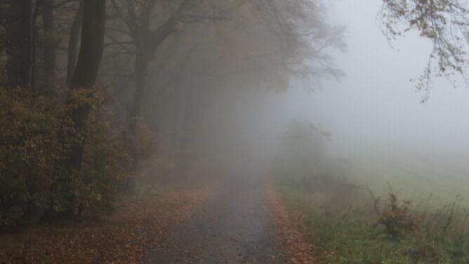 Drogi w wielu regionach spowijają gęste mgły
