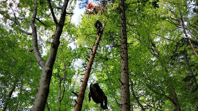 Paralotniarz utknął na drzewie, turysta upadł z wysokości. Kilka wypadków w górach