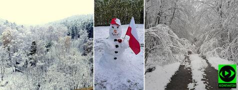 Święto Niepodległości w zimowej aurze. Śnieżne relacje Reporterów 24